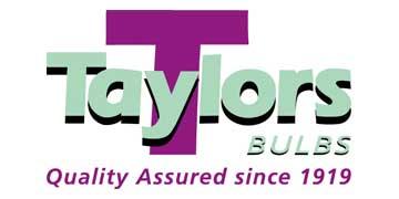 Taylors Bulbs logo