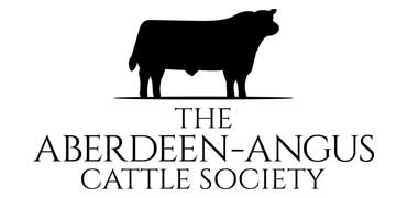 Aberdeen Angus Chief Executive